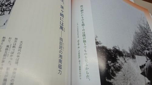 DSC_1671.JPG