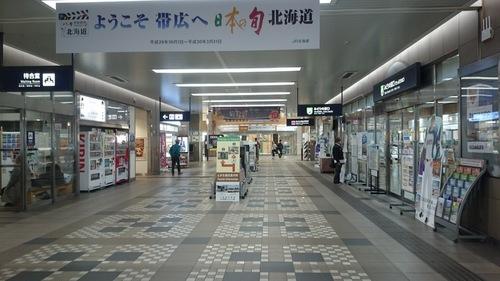DSC_2537.JPG